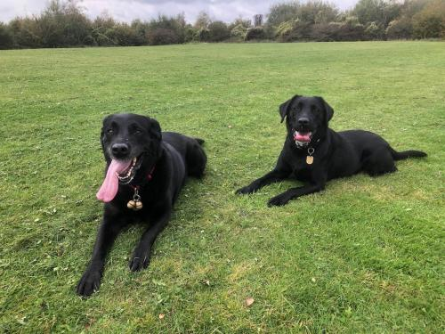 Tracey and Bella on their usual Sunday run.